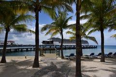 Drie Cruiseschepen in Cozumel, Mexico stock fotografie