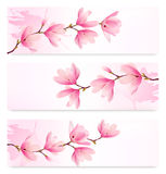Drie de Lentebanners met bloesembrunch van roze bloemen Stock Afbeeldingen