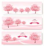 Drie de lentebanners met de roze bomen van de kersenbloesem Stock Afbeeldingen