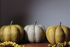 Drie Decoratieve Pompoenen op Houten Lijst royalty-vrije stock fotografie