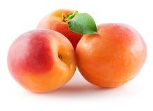Drie die abrikozen op witte achtergrond worden geïsoleerd royalty-vrije stock fotografie
