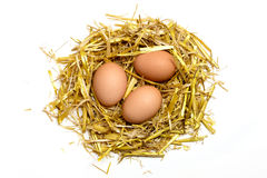 Drie die eieren in een nest van stro op witte achtergrond wordt geïsoleerd Royalty-vrije Stock Foto