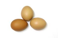 Drie die eieren op witte achtergrond worden geïsoleerd Stock Foto