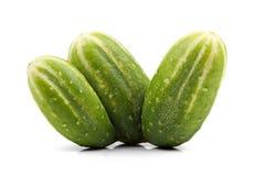 Drie die komkommermutant op wit wordt geïsoleerd royalty-vrije stock afbeeldingen