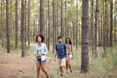 Drie die vrienden in het hout worden verloren Stock Foto