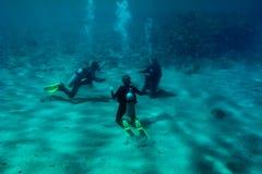 Drie duikers leiden bij de overzeese bodem op stock afbeeldingen