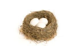 Drie eieren in een nest Stock Afbeeldingen