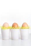 Drie eieren in witte koppen Royalty-vrije Stock Afbeelding