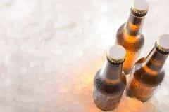Drie flessen gesloten bieren op verpletterd ijs stock foto's