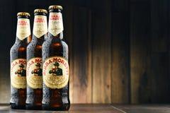 Drie flessen van Birra Moretti Royalty-vrije Stock Afbeeldingen
