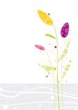 Drie gekleurde bloemen Stock Foto