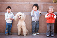 Drie gelukkige jonge kinderen met huisdierenhond Stock Foto's