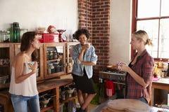 Drie gelukkige jonge volwassen meisjesbespreking die zich in keuken bevinden royalty-vrije stock fotografie
