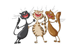Drie gelukkige katten die vrolijk lied op geïsoleerde witte achtergrond zingen Royalty-vrije Stock Afbeeldingen