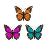 Drie geplaatste vlinders Royalty-vrije Stock Afbeeldingen