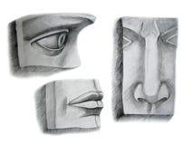 Drie gezichtsdelen Royalty-vrije Stock Foto