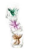 Drie glazen met ornament Stock Afbeelding