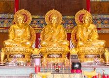 Drie Gouden Boedha. Stock Foto