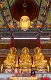 Drie Gouden Boedha. Stock Foto's
