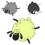 Drie grappige schapenvlieg Royalty-vrije Stock Afbeeldingen