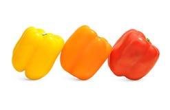 Drie groene paprika's in geel, oranje, en rood Royalty-vrije Stock Foto's