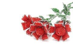 Drie grote rode geparelde rozen royalty-vrije stock afbeeldingen