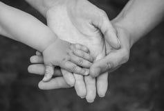 Drie handen van dezelfde familie - van de vadermoeder en baby verblijf samen royalty-vrije stock afbeelding