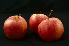 Drie heerlijke appelen Royalty-vrije Stock Foto