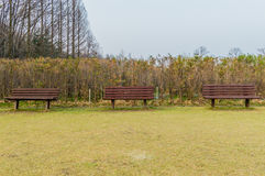 Drie houten banken Stock Fotografie