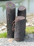 Drie houten meerpalen Royalty-vrije Stock Foto