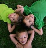 Drie jonge geitjes Stock Foto's