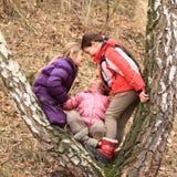 Drie jonge geitjes - meisjes die en op boom leunen spelen Stock Foto