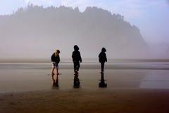 Drie jonge kinderen op nevelig strand stock foto