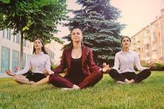Drie jonge meisjes gekleed in bureaukleren oefenen yoga uit stock fotografie