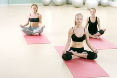 Drie jonge meisjes mediteren in sportengymnastiek Royalty-vrije Stock Afbeeldingen