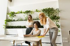 Drie jonge onderneemsters in het bureau Stock Fotografie