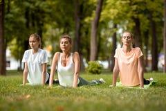 Drie jonge slanke meisjes die het uitrekken op yogamatten doen zich op groen gras in het park op een warme dag Yoga op openlucht royalty-vrije stock foto's