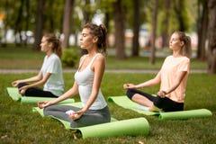 Drie jonge slanke meisjes zitten in de lotusbloemposities met het sluiten van ogen die yoga op yogamatten doen op groen gras in h royalty-vrije stock afbeelding
