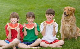 Drie Jongens die Watermeloen eten Stock Foto