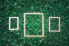Drie kaders op groene grasachtergrond Stock Fotografie