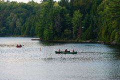 Drie kano's Royalty-vrije Stock Fotografie