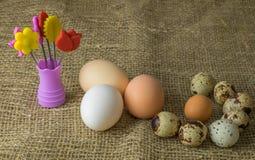 Drie kippeneieren en van kwartelseieren Parelhoenei ligt samen op een houten lijst Stock Foto