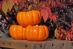 Drie Kleine Gestapelde Pompoenen Royalty-vrije Stock Afbeelding