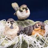 Drie kleine mooie vogeltjes Royalty-vrije Stock Foto's