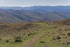 Drie kleine tenten stippelen het landschap op Max Patch Mountain stock fotografie