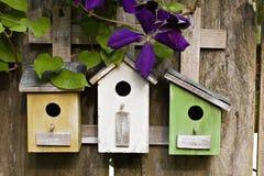 Drie kleine vogelhuizen met Clematissen royalty-vrije stock foto