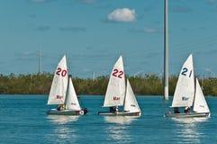 Drie, kleine zeilboten in achterbaai van Golf van Mexico royalty-vrije stock afbeelding