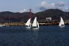 Drie Kleine Zeilboten die met Golden gate bridge in Backgro varen Stock Fotografie