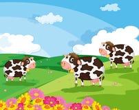 Drie koeien royalty-vrije illustratie