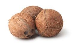 Drie kokosnoten die op het wit worden geïsoleerdo Stock Afbeelding